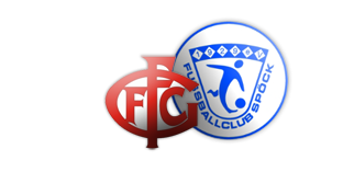 FCGFO_FCS